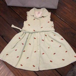 Summer button down watermelon inspired dress